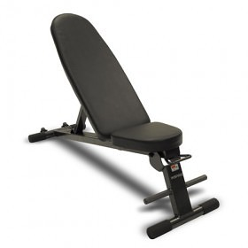 Inspire Folding Bench (Works with FT1, SCS and PT1)